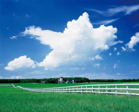 牧場の写真素材 [FYI02366650]