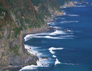 鵜の巣断崖の写真素材 [FYI02366761]