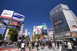 渋谷駅前の写真素材 [FYI02367536]