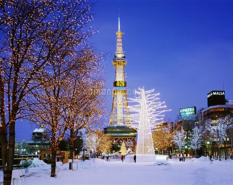 札幌のイルミネーションとテレビ塔の写真素材 [FYI02371413]