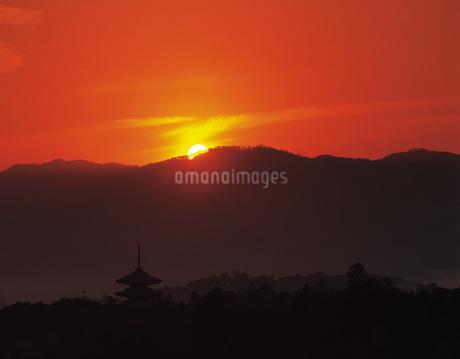 斑鳩の法隆寺五重塔夕景の写真素材 [FYI02372920]