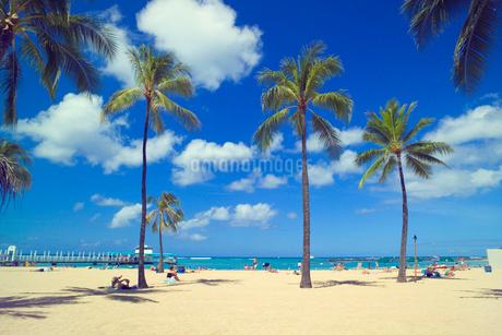 ワイキキビーチの写真素材 [FYI02373917]