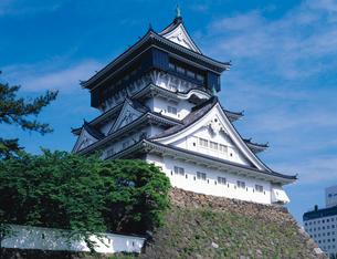 小倉城の写真素材 [FYI02373923]