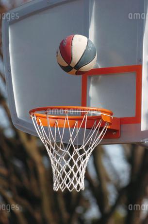 バスケットゴールの写真素材 [FYI02375164]