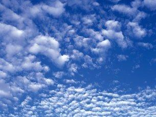 いわし雲の写真素材 [FYI02380299]