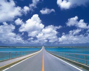 まっすぐ伸びる道路 沖縄の写真素材 [FYI02386321]