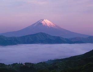 雲海と富士山の写真素材 [FYI02388574]