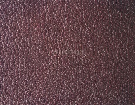 牛革の写真素材 [FYI02388738]