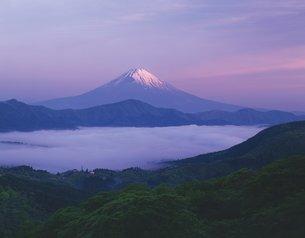 富士山の写真素材 [FYI02389186]