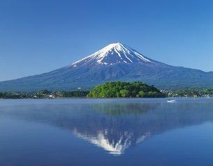初夏の富士山の写真素材 [FYI02389348]