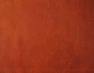 牛革の写真素材 [FYI02389697]