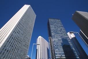 新宿高層ビル街の写真素材 [FYI02390379]