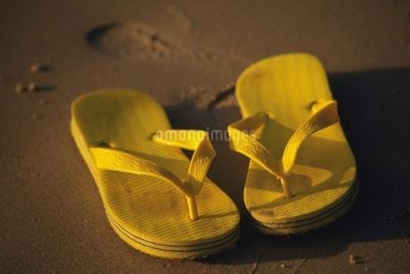 砂浜のビーチサンダルの写真素材 [FYI02394960]