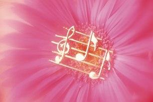 ミュージックイメージの写真素材 [FYI02395223]