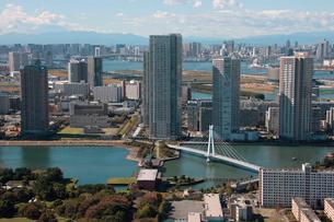 辰巳運河 辰巳水門 東雲水辺公園の写真素材 [FYI02398942]