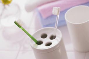歯ブラシの写真素材 [FYI02398964]