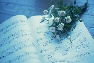 花と楽譜の写真素材 [FYI02399034]