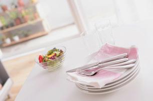サラダと皿の写真素材 [FYI02399096]