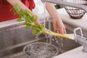 野菜を洗う手の写真素材 [FYI02399156]