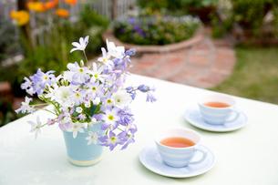 紅茶と花の写真素材 [FYI02399257]