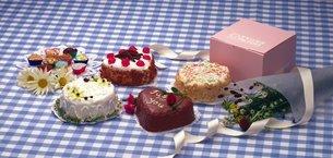 ハートのケーキの写真素材 [FYI02399367]