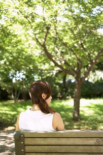 公園のベンチに座る女性の後姿の写真素材 [FYI02400136]
