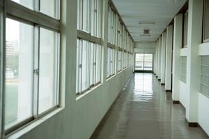 学校の廊下の写真素材 [FYI02400522]