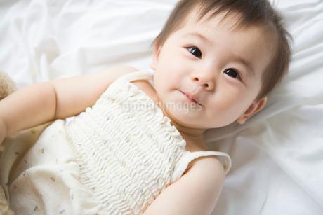 赤ちゃんのポートレートの写真素材 [FYI02403245]