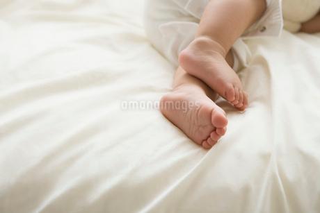 赤ちゃんの足の写真素材 [FYI02403383]