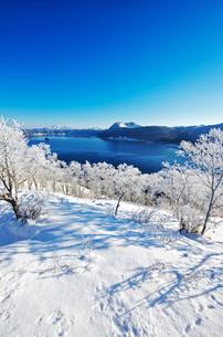 摩周湖の樹氷の写真素材 [FYI02416363]