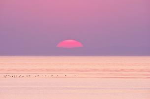 瀬戸内海(播磨灘)の夕陽の写真素材 [FYI02416427]
