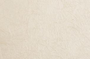 和紙の写真素材 [FYI02419901]