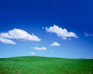 緑の丘の写真素材 [FYI02420327]