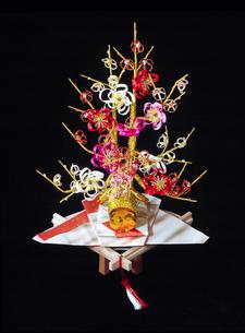 結納に使われる梅の水引飾の写真素材 [FYI02420367]