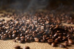 コーヒー豆の写真素材 [FYI02420945]