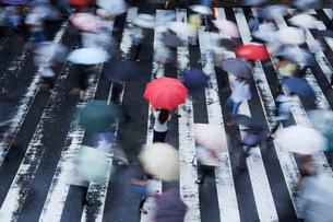 歩道で傘を持ってたたずむ女性を上から見るの写真素材 [FYI02421043]