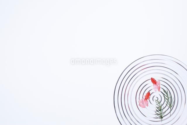 波紋の中のおもちゃの金魚と水草の写真素材 [FYI02421051]