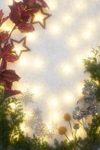 斑な光と冬の装いの写真素材 [FYI02422423]