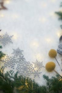 斑な光と冬の装いの写真素材 [FYI02422473]