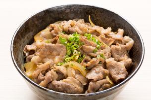 牛丼の写真素材 [FYI02422479]