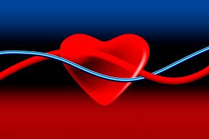 心臓と血管の写真素材 [FYI02423367]