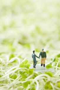 スプラウトに囲まれて握手をするビジネスマンと生産者の写真素材 [FYI02424140]