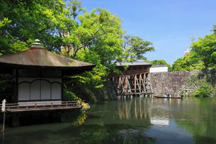 新緑と和歌山城の紅葉渓庭園の写真素材 [FYI02427469]