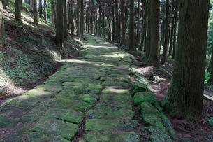 龍門司坂の石畳の写真素材 [FYI02427716]