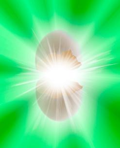 卵イメージのイラスト素材 [FYI02429170]