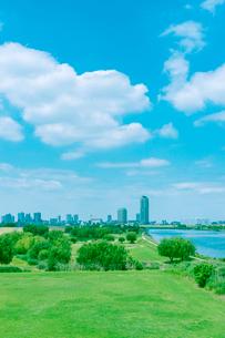 ビル街を望む荒川河川敷の写真素材 [FYI02432880]
