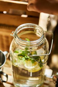 ガラスのウォータージャグの中に入ったミントとレモンの写真素材 [FYI02433266]