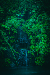 川に注ぎ込む岩清水の写真素材 [FYI02434053]