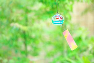 庭の緑と風鈴の写真素材 [FYI02435057]