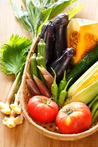 夏野菜の写真素材 [FYI02436915]